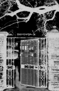 black and white photo of gate entrance